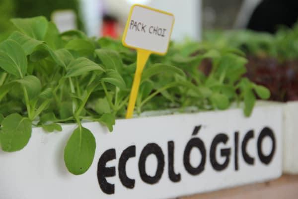 agricultura_ecologica_et_fotor
