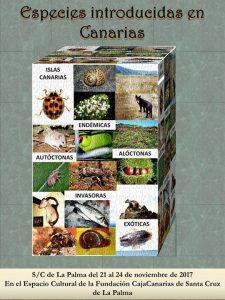 Especies introducidas en Canarias @ Espacio Cultural de la Fundación Caja Canarias | Santa Cruz de La Palma | Canary Islands | Spain
