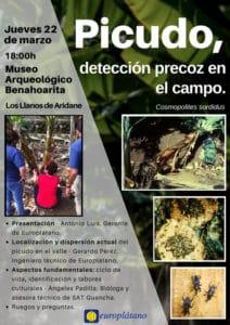 Picudo, detección precoz en el campo @ Museo Arqueológico Benahoarita | Los Llanos | Canarias | Spain
