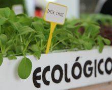 El Cabildo pide unificar el registro de productos ecológicos en una sola tasa de 71,36€ – El Time