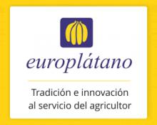 El plátano canario conquista el mercado suizo – El Apurón