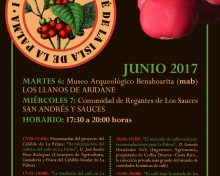 El Cabildo de La Palma presentará un proyecto para fomentar y revalorizar el cultivo del café tradicional en la Isla | 6 y 7 de junio