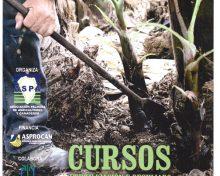 Curso Fertilización y deshijado en plataneras | 11, 12 y 14 de julio