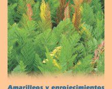 Guía folleto sobre los amarilleos y enrojecimientos de la zanahoria