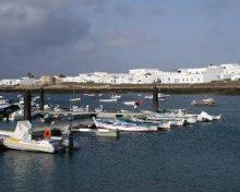 El Gobierno canario concede al subsector pesquero del Archipiélago subvenciones del FEMP por 12 millones de euros