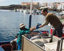 El Gobierno de Canarias anuncia la convocatoria, en los próximos días, de subvenciones para el subsector pesquero canario por 16,8 millones de euros