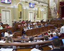 El Gobierno canario asume la propuesta palmera de cobrar una sola tasa a las producciones ecológicas