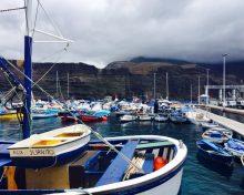 El Ministerio reabre la pesquería de atún blanco (barrilote) a la flota canaria