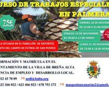 Cursos de trabajos especiales en palmeras | 18 a 21de noviembre 2016
