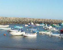 El Gobierno de Canarias concede subvenciones a las cofradías de pescadores por 737.000 euros
