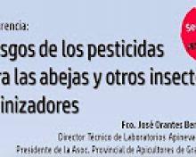 Riesgo de los pesticidas para las abejas