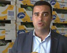 Ayuda al transporte y unidad del sector del plátano | Crónicas del Campo Palmero
