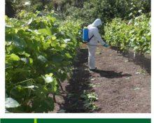 Evaluación de productos fitosanitarios alternativos al azufre en agricultura ecológica en el control de oídio en viña | Agrocabildo