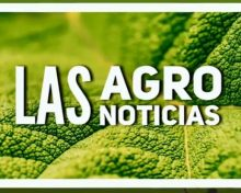 Agro Noticia Jornadas Cereal