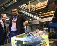 Una 'pica' flexible y exportar a Europa en vez de retirar: las dos claves de la vuelta de Europlátano a Asprocan