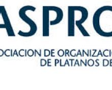 Convocatoria de Concurso de Fotografía de Plátano de Canarias de las RUP
