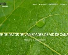 Base de datos de variedades de vid de Canarias