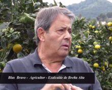 Entrevista a Blas Bravo: Comercialización del producto local
