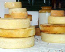 Efecto de la inclusión del lactosuero como agua de bebida de las cabras en la calidad de los quesos