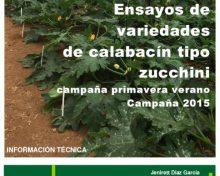 Ensayos de variedades de calabacín tipo zucchini | Agrocabildo