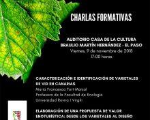 Charlas Formativas con motivo de la celebración de San Martín