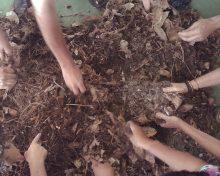Fundación CIAB: Un impulso para la agricultura ecológica en La Palma