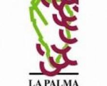 Concursos de la XXIII Celebración de la Viña y el Vino San Martín 2018