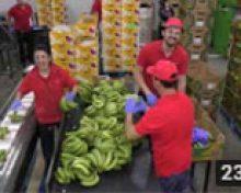 Coplaca Transmite: Mercados Exteriores de Coplaca