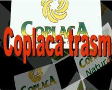Coplaca Transmite: 25 años de Eurobanan Canarias