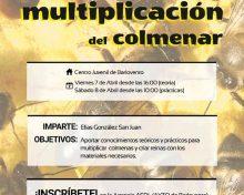 Curso de cría de reinas y multiplicación del colmenar | 7 y 8 de abril