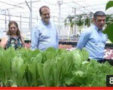 Cultivo Hidropónico Hortícola y Peces | Crónicas de Campo