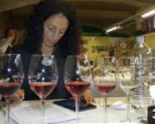 Cata preliminar Concurso Oficial Vino Canarias | Crónicas del Campo