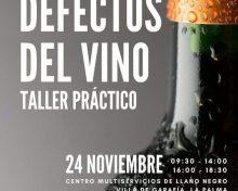 Taller práctico «Defectos del vino»