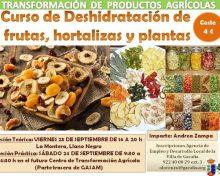 Curso de Deshidratación de frutas, hortalizas y plantas