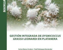 Gestión Integrada de Dysmicoccus grassii Leonardi en platanera