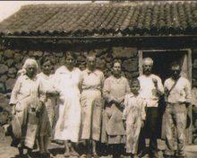 El boniato en La Palma y la familia Verdugo