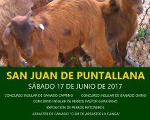XII Feria de Ganado San Juan de Puntallana | 17 de junio