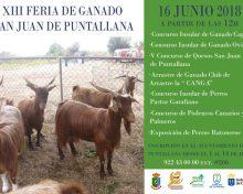 Feria de Ganado San Juan de Puntallana