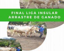 Final Liga Insular Arrastre de Ganado | 16 de Septiembre