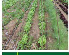 Guía de productos fitosanitarios de uso en agricultura ecológica | Agrocabildo