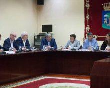 Los Cabildos se suman a la declaración del sector primario y el Gobierno de Canarias contra la propuesta de la UE de recortar el POSEI