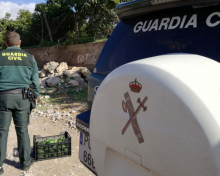La Guardia Civil pilla a H.A.C, 'cabecilla' de los robos de aguacates en La Palma | El Time