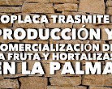 Mesa redonda sobre producción y comercialización de frutas y hortalizas en La Palma