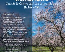 Jornada del Almendro | 17 de Enero