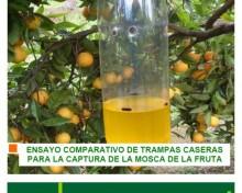 Ensayo compartivo de trampas caseras para la captura de la mosca de la fruta | AGROCABILDO
