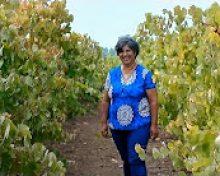 Acto de reconocimiento a la mujer rural de Canarias | Crónicas del Campo