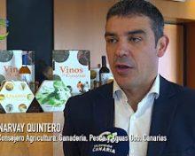 Narvay Quintero repasa el 2017 | Canarios de Campo y Mar
