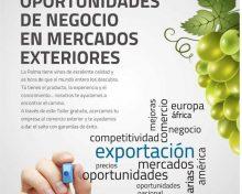 Oportunidad de Negocio en Mercados Exteriores