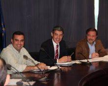 La superficie de cultivo de aguacate se incrementa un 58% en Canarias en ocho años