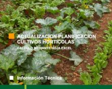 Actualización planificación cultivos hortícolas | Agrocabildo